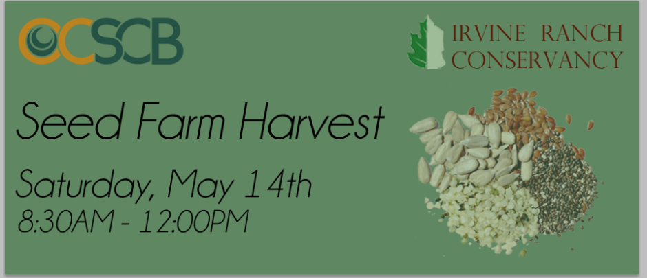 Find out more and RSVP for the Seed Farm Harvest